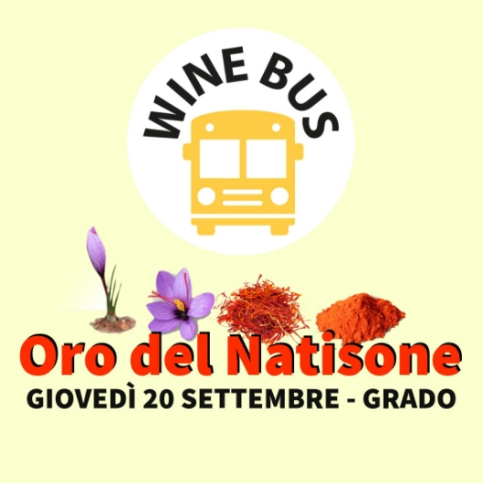 Wine Bus Oro del Natisone